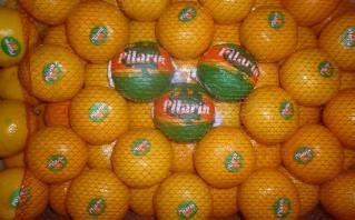 Mandarins & Oranges